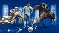 Виртуални спортове на Winbet
